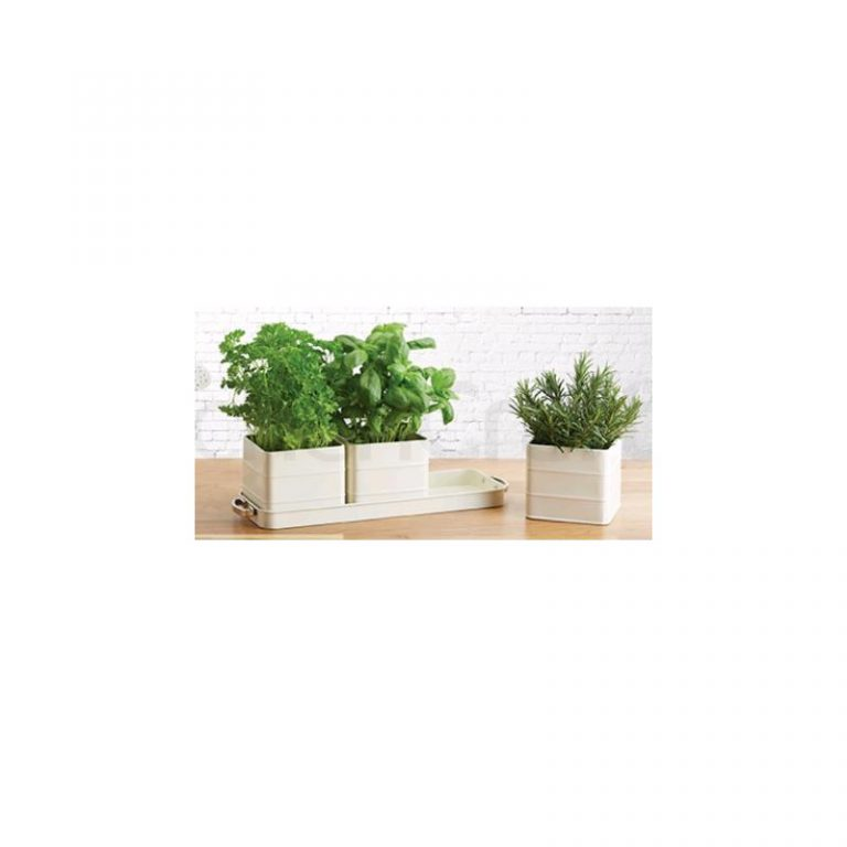 Herb Pots With Water Tray